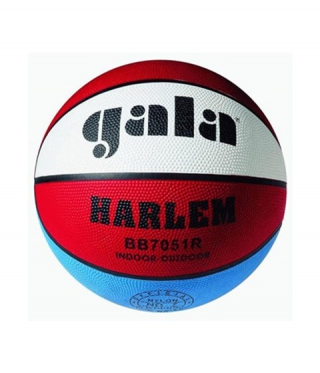 Basketball Tempish Harlem
