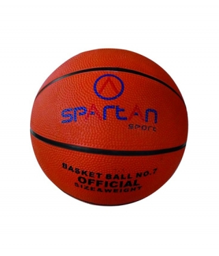 Basketball / Trainingsball SPARTAN Florida N 5